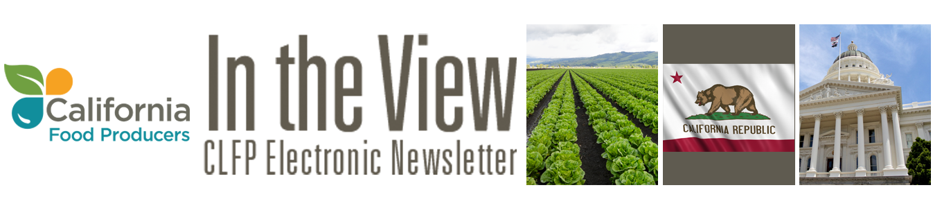In the View eNewsletter